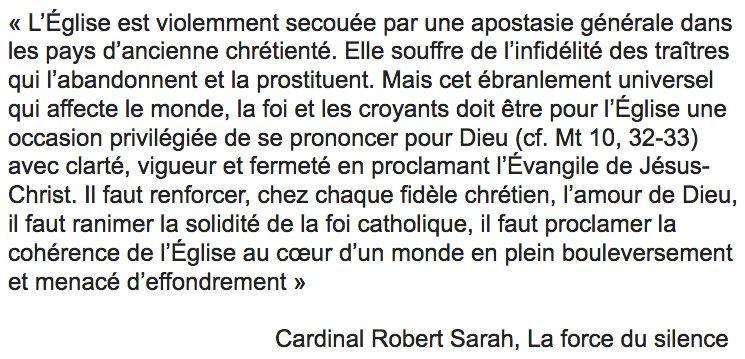 «L'Eglise souffre de l'infidélité des traîtres qui l'abandonnent et la prostituent» (Cardinal Sarah)
