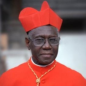 Le cardinal Sarah se lève contre «l'homohérésie» du père James Martin, consultant au Vatican