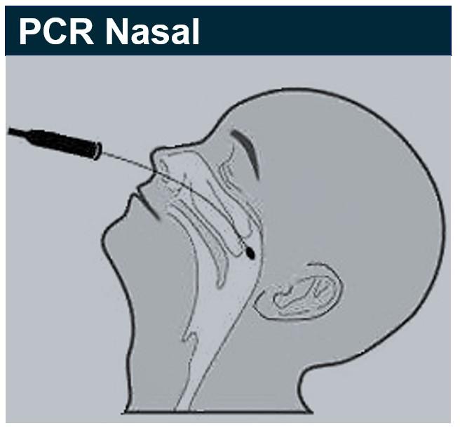 Les tests PCR inefficaces et dangereux